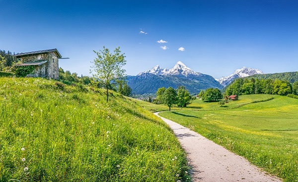Panoramic view of idyllic summer landscape in the Alps_210119407.jpg